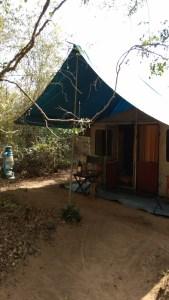 Las tiendas del campamento Wilpattu Big Game. Sri Lanka