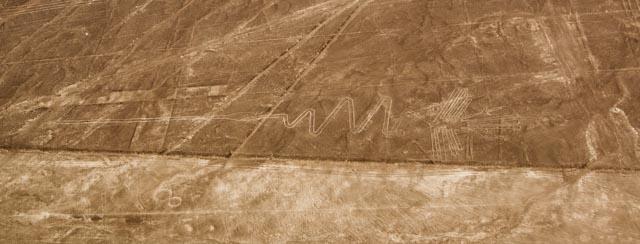 Figura del alcatraz o guanay en Nazca, Perú