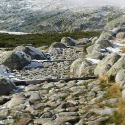 El camino empedrado que parte de la Plataforma de Gredos