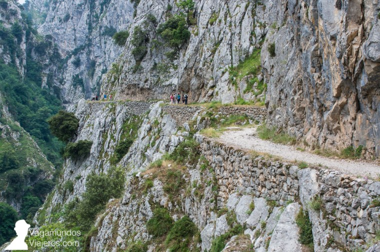 La ruta zigzaguea por el lateral del desfiladero del Cares