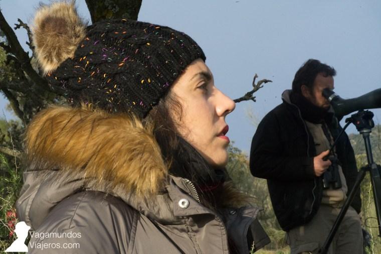 Esperando para lograr avistar linces en la sierra de Andújar, JaénEsperando para lograr avistar linces en la sierra de Andújar, Jaén