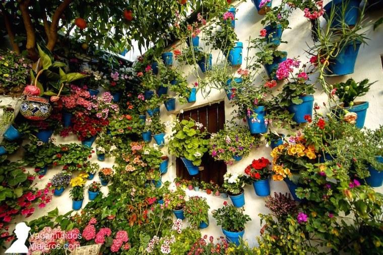 Tinte 9, tercer premio en la modalidad tradicional, en el concurso de patios de Córdoba 2018