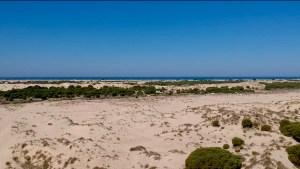 El impresionante paisaje de dunas del Parque Nacional de Doñana