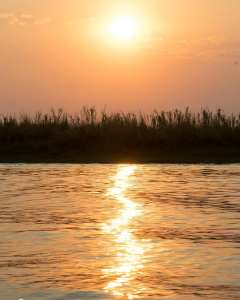 Atardecer en el río Chobe, Botswana