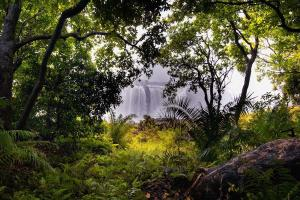 Las cataratas Victoria vistas desde el Parque Natural de Zimababue