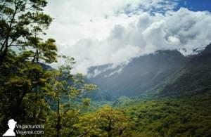 El camino hacia Milford Sound, entre verdes montañas, en Nueva Zelanda