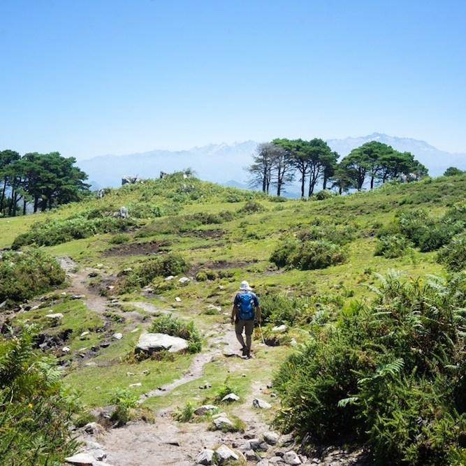 Ruta al Pico Pienzu en la sierra del Sueve, Asturias