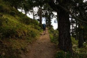 Inicio de la ruta al Pico Pienzu desde el área recreativa del Mirador del Fitu, Asturias