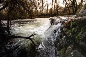 El río Lozoya a su paso por la Finca de los Batanes