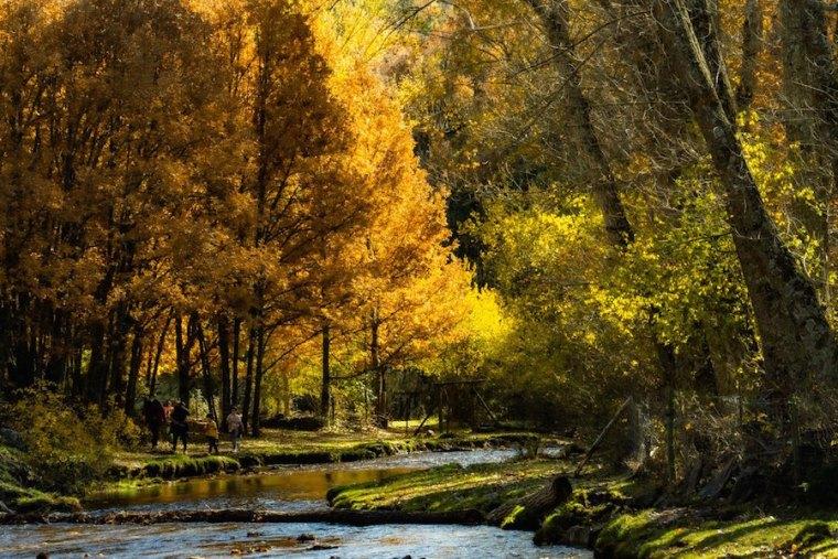 """Senda """"De molino a molino"""" en La Hiruela, caminando junto al río Jarama"""