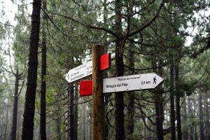 Señales de la ruta de los volcanes en La Palma