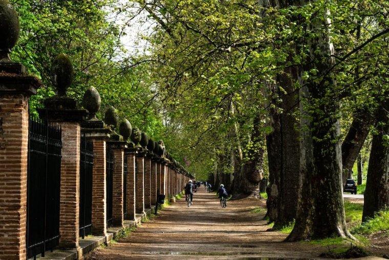 Calle de la Reina, paralela al Jardín del Príncipe, en Aranjuez
