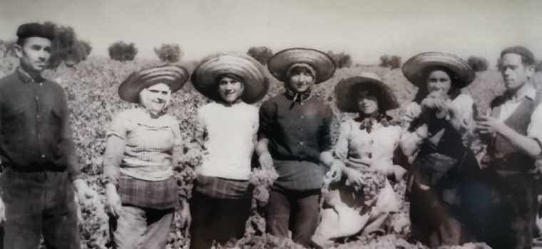 Fotos antiguas en el Museo Torre del Vino de Socuéllamos