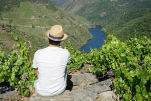 Mirador de Souto Chao en la orilla de Lugo de la Ribeira Sacra, Galicia