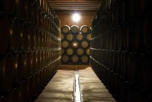 Sala de barricas en Cooperativa Vinícola de Valdepeñas