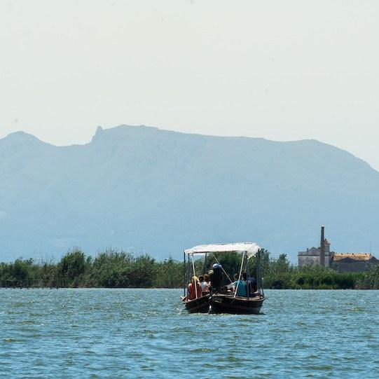 Paseo en barca por el lago de la Albufera