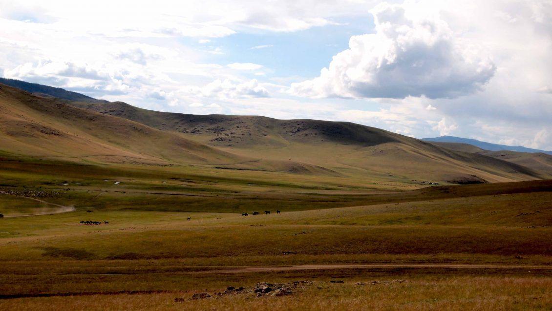 Valle-de-Orkhon-Mongolia