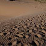 que-ver-en-el-desierto-gobi-dunas-Khongoryn-Els