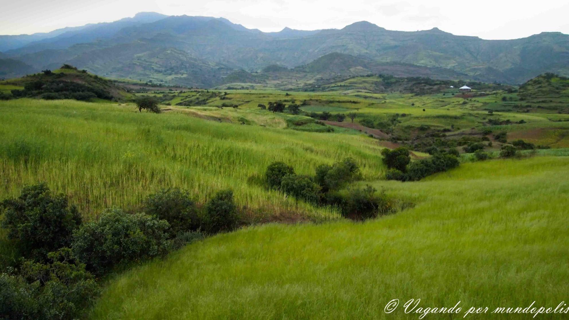 Tierras-Altas-Eiopia