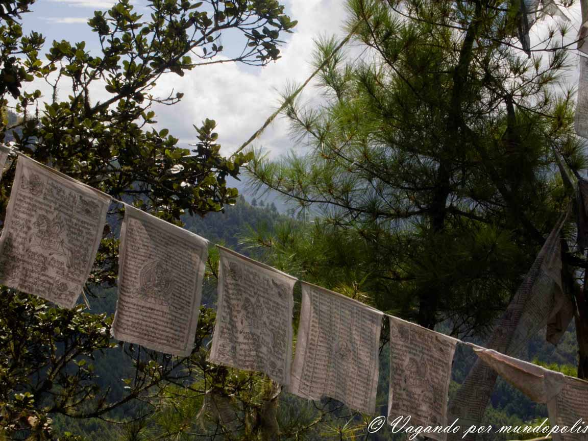 nido-del-tigre-butan