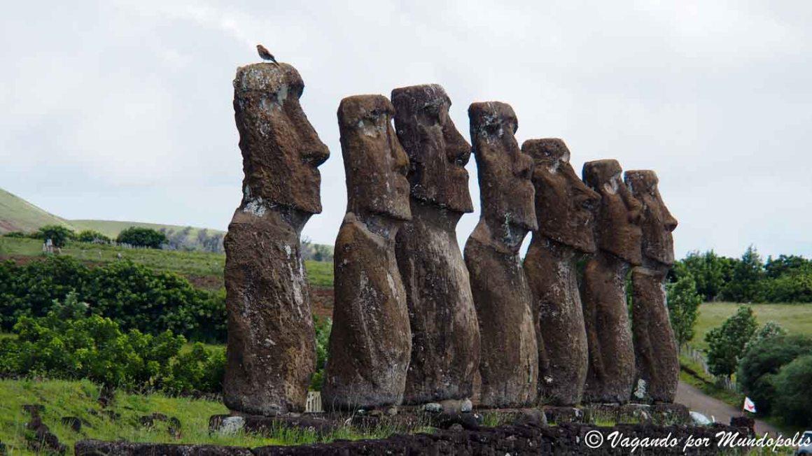 Moais-Isla de Pascua