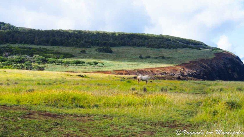 parque-nacional-rapa-nui
