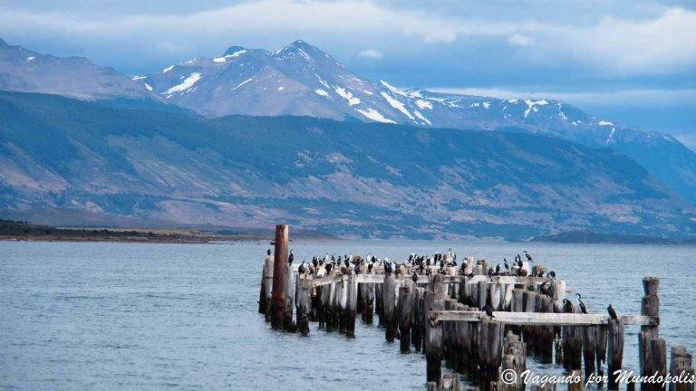 Que ver en Puerto Natales