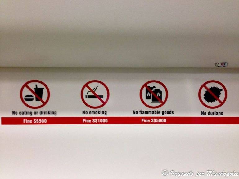 que-saber-antes-de-ir-a-singapur