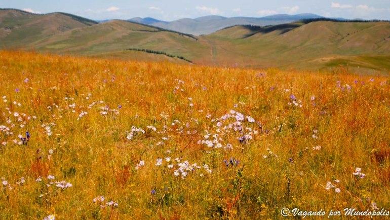 que-ver-en-mongolia-tsenkher