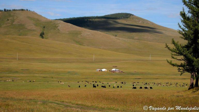 pasiajes-mongolia-central