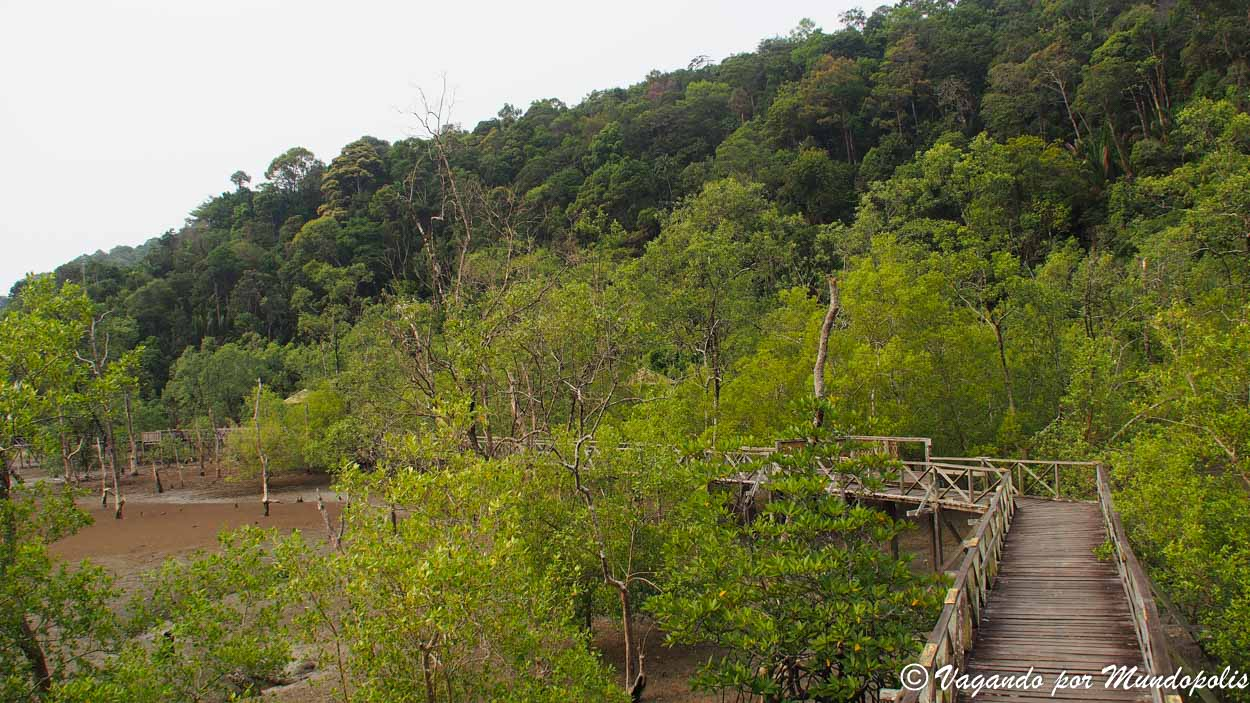 parque-nacional-de-bako-borneo