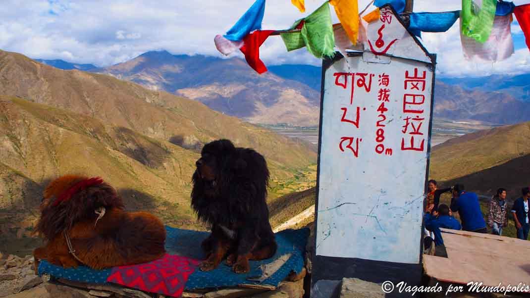 gangba-la-pass-tibet