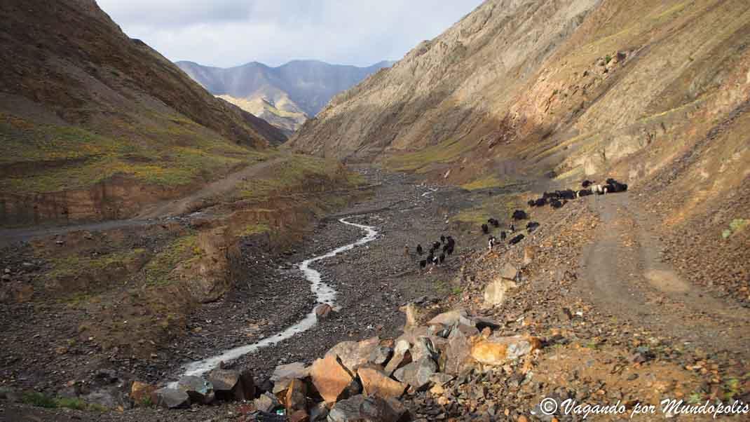 montañas-tibet