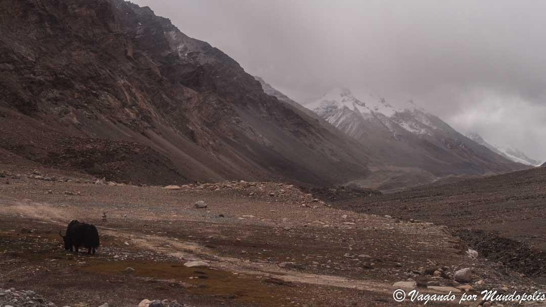 pasos-montaña-tibet