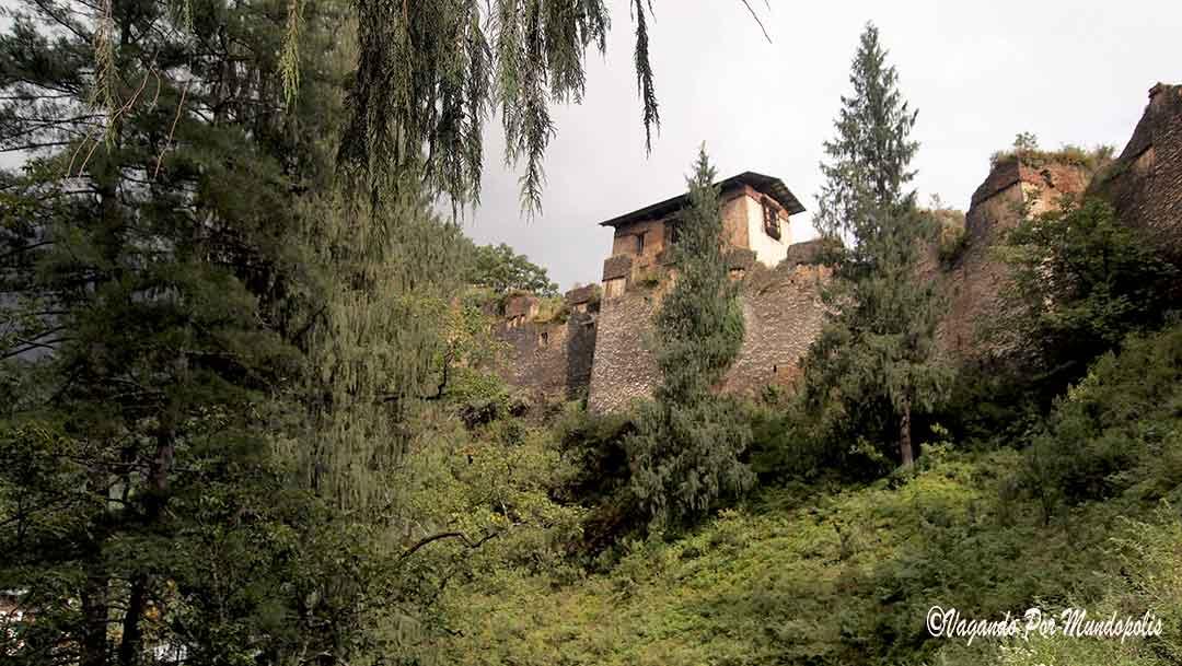 drukgyel-dzong-paro-butan
