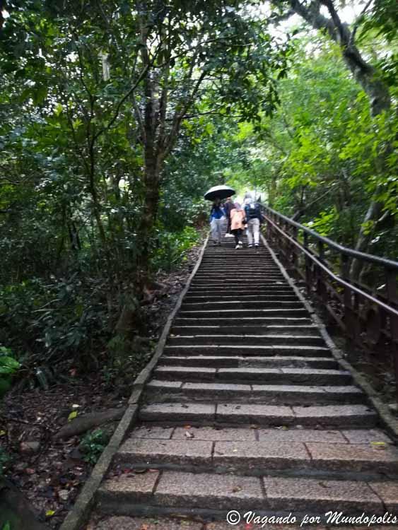 que-hacer-en-taipei-elephant-mountain