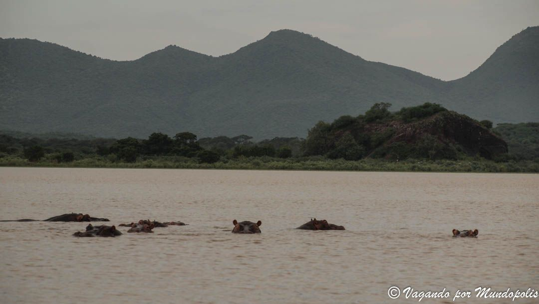 lago-chamo-etiopia