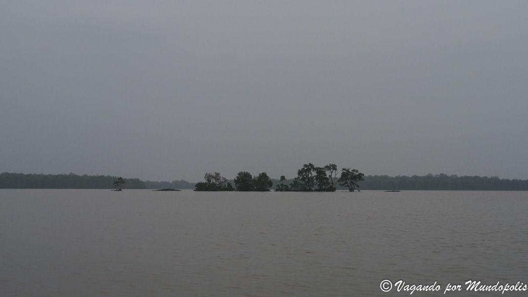 que-hacer-en-kuching-delfines-irawaddy