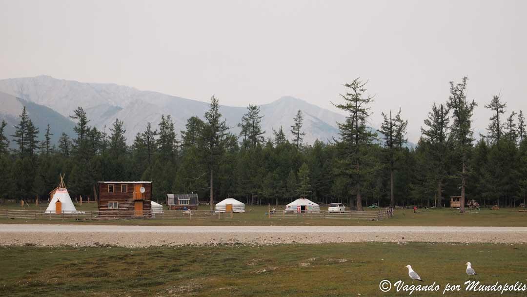 tsataan-mongolia