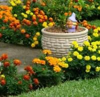 Curso de Jardinagem Online