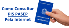 Consultar Pis Pasep Nit - Online, Site