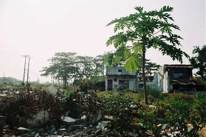 Ho Chi Minh City. Thu Thiem Adriana Roos