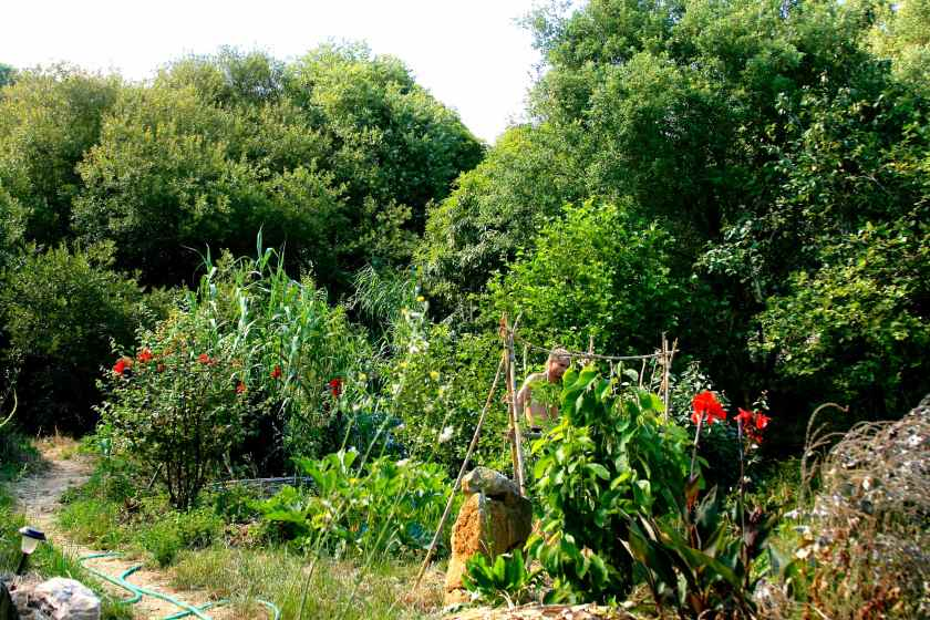 Off Grid Living Permaculture in Portugal