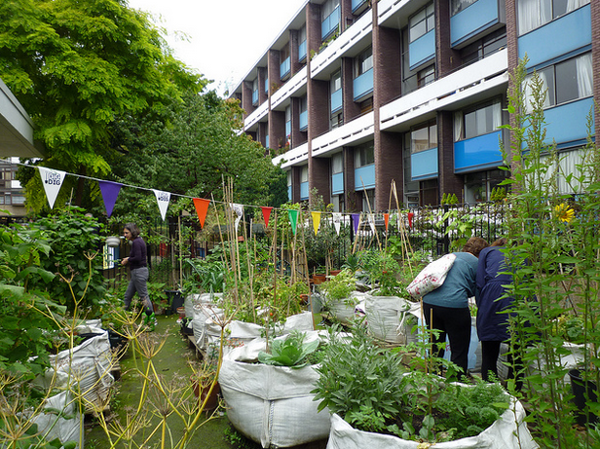 permaculture-cities-landscaping