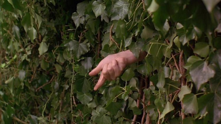the-secret-garden-two