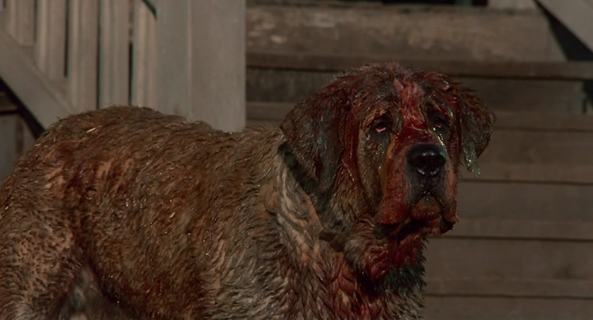 The Various Representations of Dogs in the Horror Genre