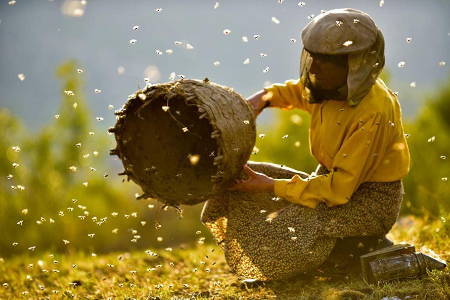 Honeyland Documentary Hulu