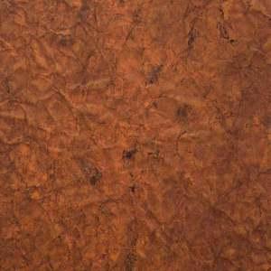 Certus---Copper-Reef