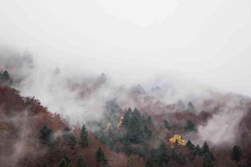 img_9413-automne-valbonnais