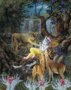 krishna-forest